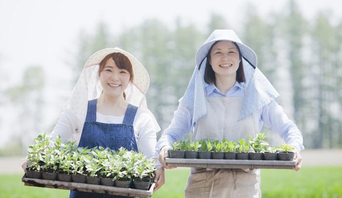 農業支援外国人受入事業